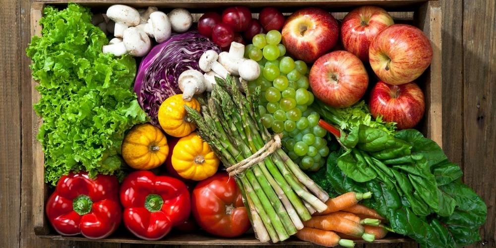 dieta wegańska, Akademia Mokotów