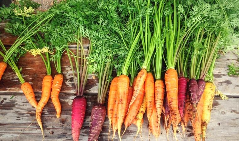 Dlaczego coraz częściej sięgamy po produkty organiczne?