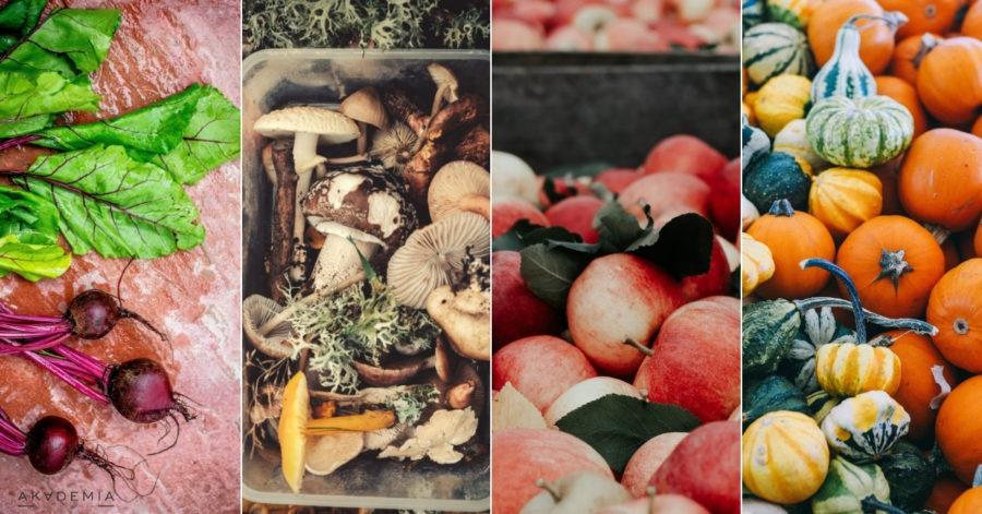 Wrzesień na talerzu – hity kuchni sezonowej