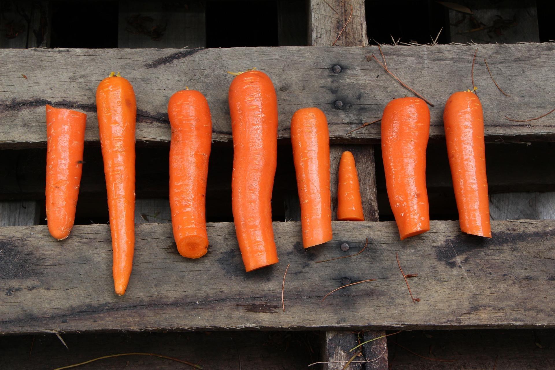 Dieta paleo – zasady, plusy, minusy Restauracja Akademia